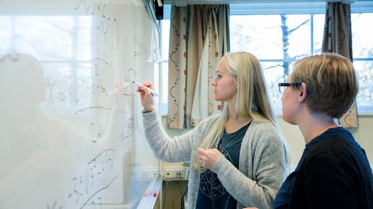 Gymnasieelever löser mattetal. Foto: Berit Roald/TT