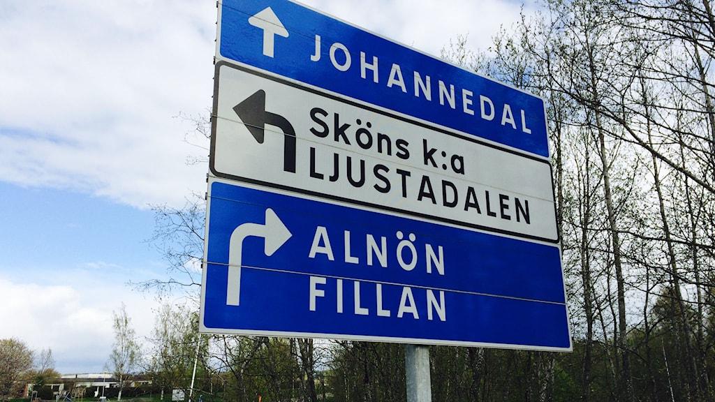 Nu ska alla skyltar ha skrivningen Alnön. Foto: Niklas Axelsson/SR