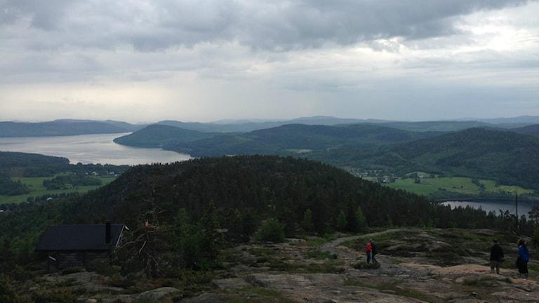 Utsikt över kullar och en havsvik från Skuleberget en molnig dag. Foto: Peter Hansson/Sveriges Radio