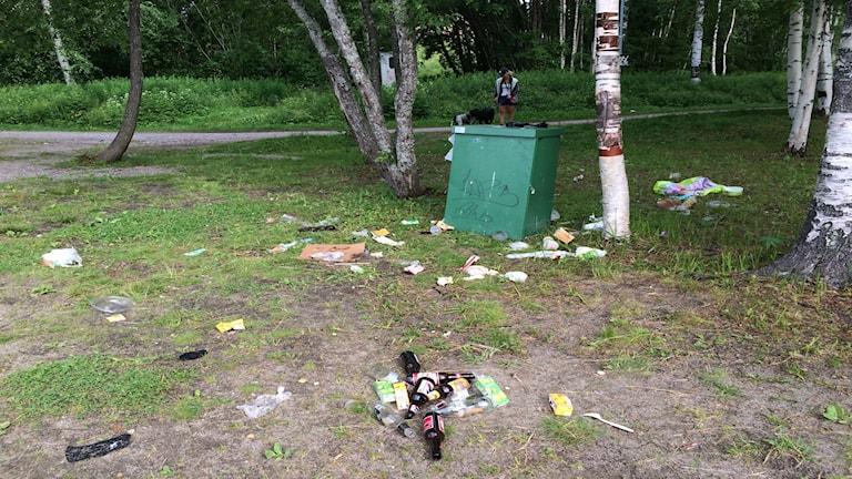 Mycket skräp vid badplatsen i Sidsjön. Foto: Jennifer Engström/SR