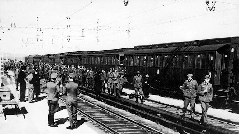Tysk transittrafik genom Sverige 1945. Foto: SVT