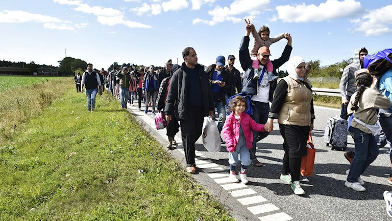 Flyktingar på väg till fots genom Danmark till Sverige. Foto: Bax Lindhardt/Scanpix Danmark/TTbild