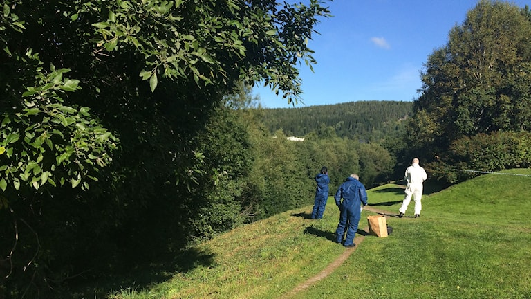Här är platsen i Sundsvall där mordet skedde på den 25-åriga kvinnan från Östersund. Foto: Anna Ahlström/SR
