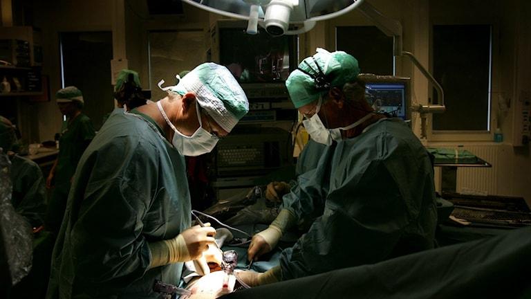 Ett operationsteam i aktion. Foto: Jack Mikrut/TT