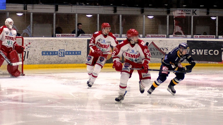 Det blev en andra raka seger för Sundsvall mot Timrå i medelpadsderbyt i hockeyallsvenskan. Foto: Carl-Johan Höiby/SR
