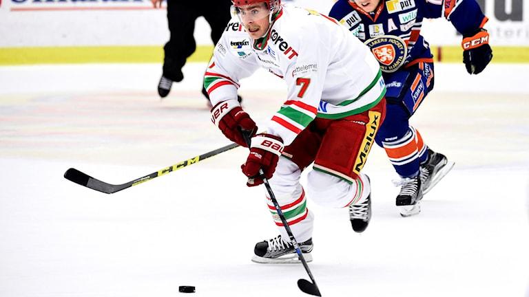 Modos Nichlas Torp under torsdagens ishockeymatch i SHL mellan Växjö Lakers och Modo Hockey. Foto: Mikael Fritzon/TT