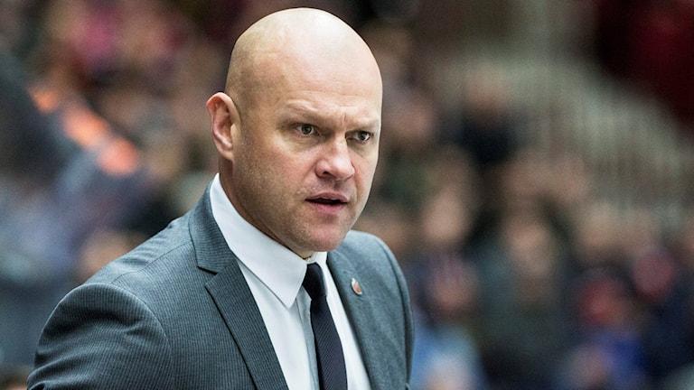 Modo hockeys tränare Andreas Johansson. Foto: Andreas Hillergren / TT