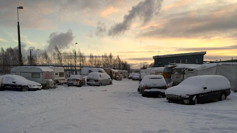 Migrantlägret i Sundsvalls hamn. Foto: Viktor Åsberg/SR