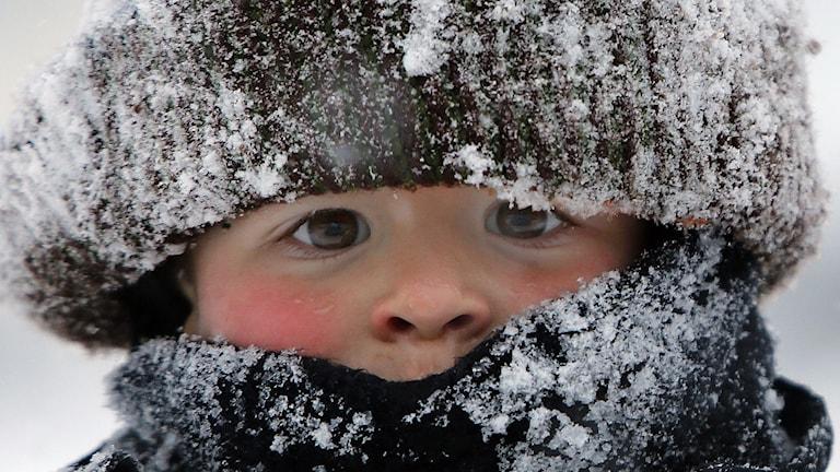 Will är påpälsad och har mössan full med snö. Foto: Jim Cole/AP/TT