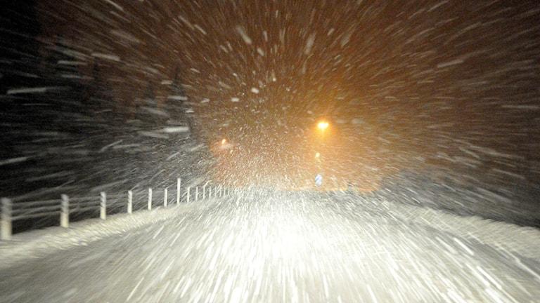 Kraftigt snöfall. Foto: Johan Nilsson/TT