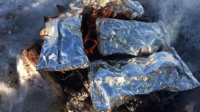 Fisk och potatis tillagas i foliepaket över öppen eld. Foto: Niklas Axelsson/SR