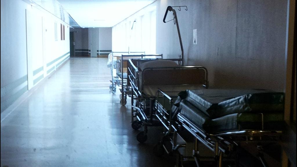 Tomma sjukhushussängar uppradade längs väggen i en nedsläckt korridor.