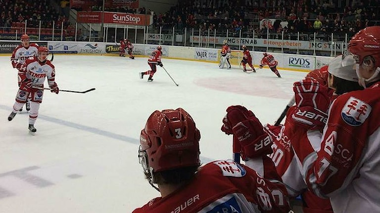 Timrå Almtuna vid första playoff-matchen i Uppsala. Foto: Sveriges Radio
