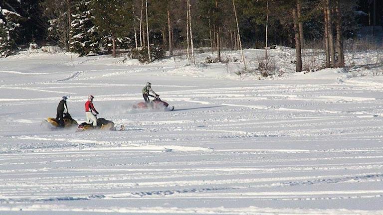 Skoteråkare på vinterfält. Foto: Ingrid Eriksson