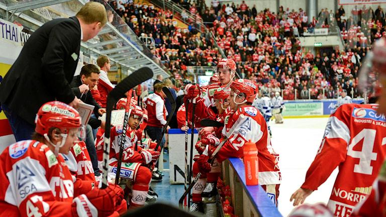 Timrå IK i båset under en timeout. Foto: Robin Nordlund/TT