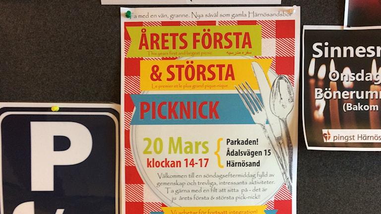 På söndag är det picknick där gamla och nya Härnösandsbor kan mötas. Foto Ulla Öhman