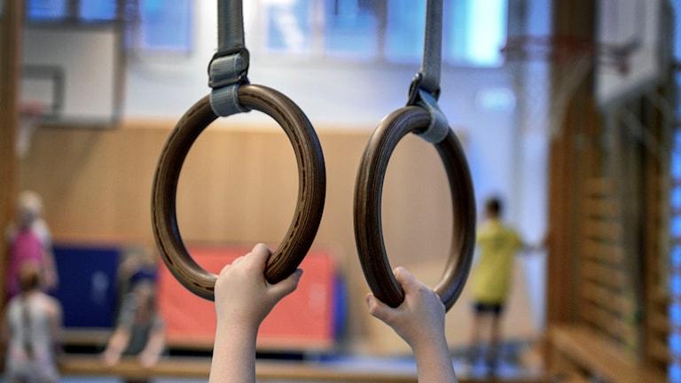 Ett barn hänger i ett par ringar under en gympalektion. Foto: Anders Wiklund/TT