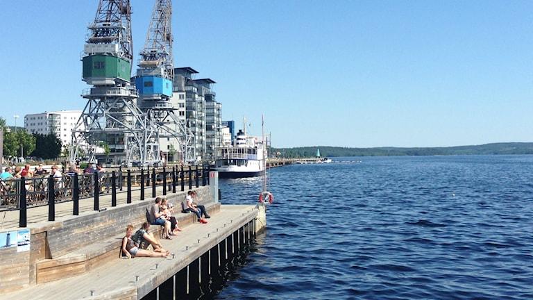 Folk på träkajen i hamnen en solig sommardag i Örnsköldsvik. Foto: Peter Hansson/Sveriges Radio
