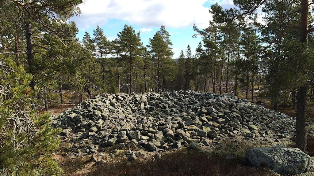 Grav från bronsåldern på Hemsön. Foto: Niklas Axelsson/Sveriges Radio