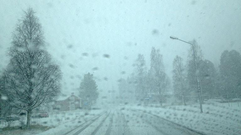 Kraftigt snöfall i Viksjö. Foto: Per-Erik Karlsson/Sveriges Radio