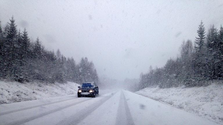 Kraftigt snöfall även norr om Sollefteå. Foto: Lotte Nord/Sveriges Radio