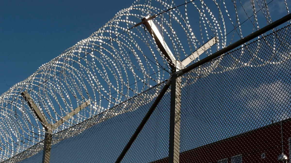 Taggtråd på fängelse.