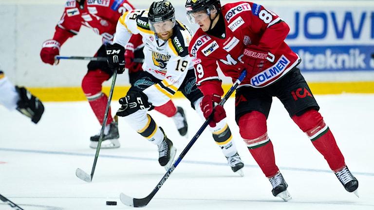 Panterns Jakob Karlsson och Modos Patrik Karlkvist under ishockeymatchen i Hockeyallsvenskan mellan Modo och Pantern den 17 september 2016 i Örnsköldsvik. Foto: Robbin Norgren/Bildbyrån