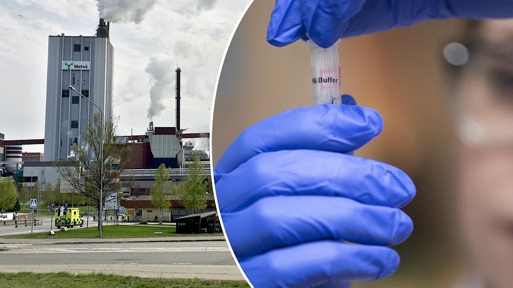En fabrik med rök och en närbild på ett provrör som en kvinna med blå handskar håller i.