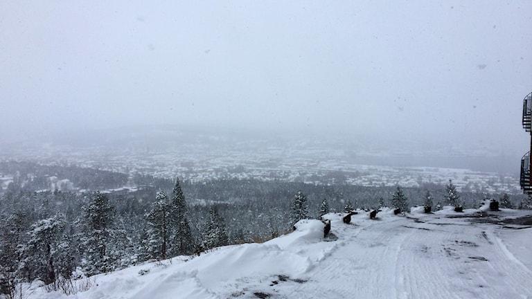 Kraftiga snöbyar över centrala Sundsvall. Svårt att urskilja staden från Södra berget. Foto: Christer Jonasson/Sveriges Radio