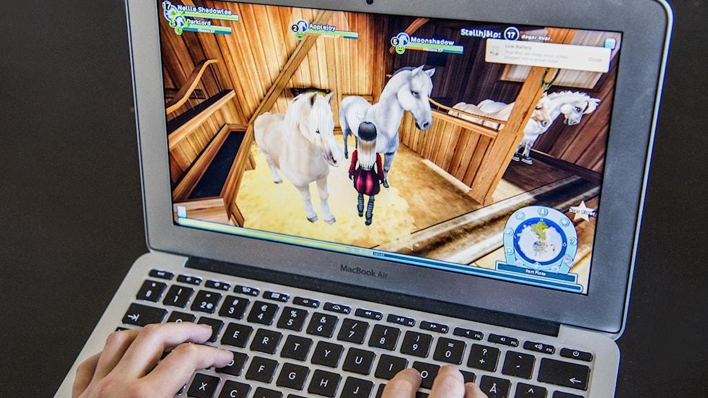 Dataspel på en dator
