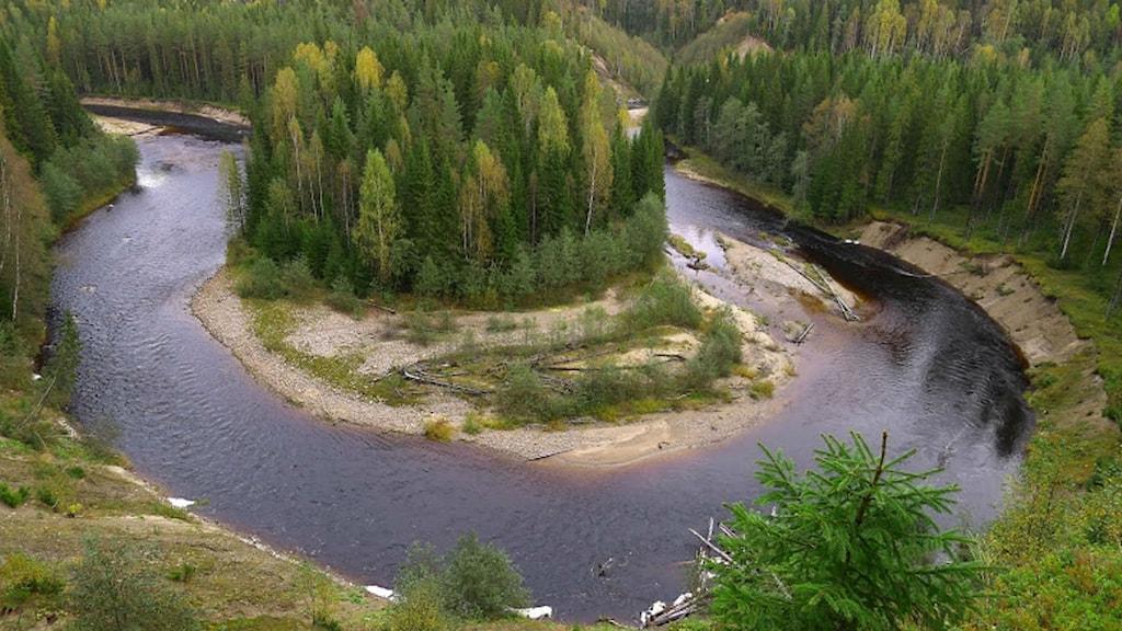 Mjällådalen. Foto Hans Sundström