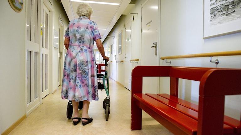 En äldre dam som går med rullator i en korridor på ett äldreboende.