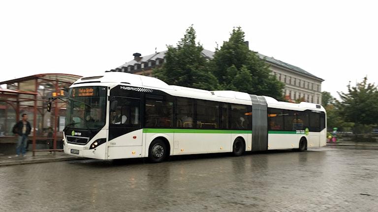 buss, busstation, Navet