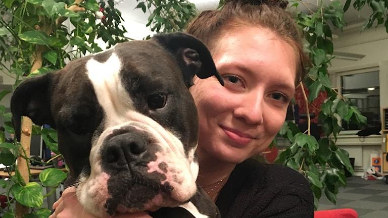 Jennie Lindqvist, styrelsen för Sundsvalls brukshundklubb med sin Old English bulldog Märta-Maj