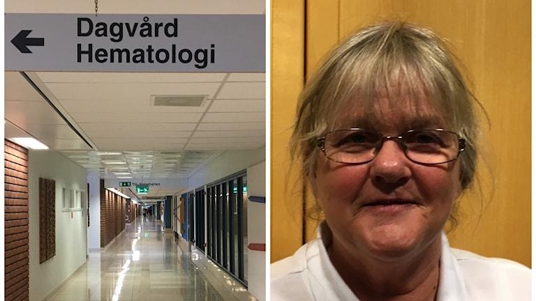 Maria Roos är arbetsterapeut. Foto Ulla Öhman