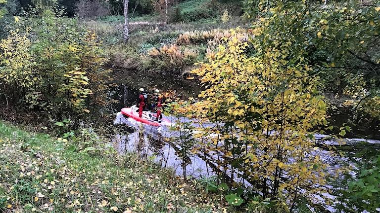 En specialbyggd vattenskoter med två personer från räddningstjänsten kör långsamt i Selångersån under sökandet efter en man som försvunnit. Foto: Fredrik Birging/Sveriges Radio