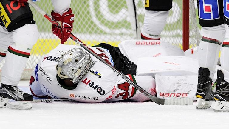 Modos målvakt Erik Hanses räddar under en ishockeymatch Pantern - Modo. Foto: Anders Bjurö/Bildbyrån
