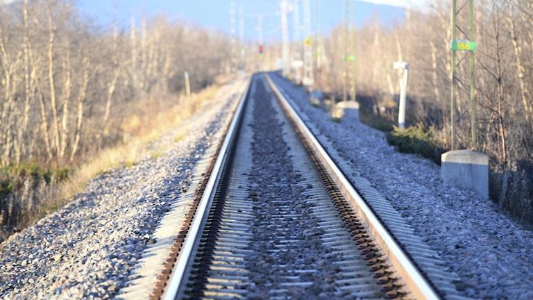 En tom järnväg med tätt buskage längs rälsen. I fjärran tornar ett berg upp sig. Foto: Fredrik Sandberg/TT