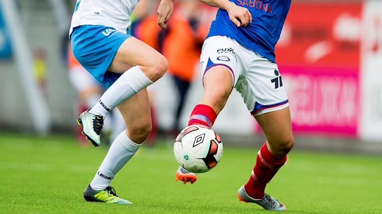 Match i damfotboll. Foto: Vegard Wivestad Grott/Bildbyrån