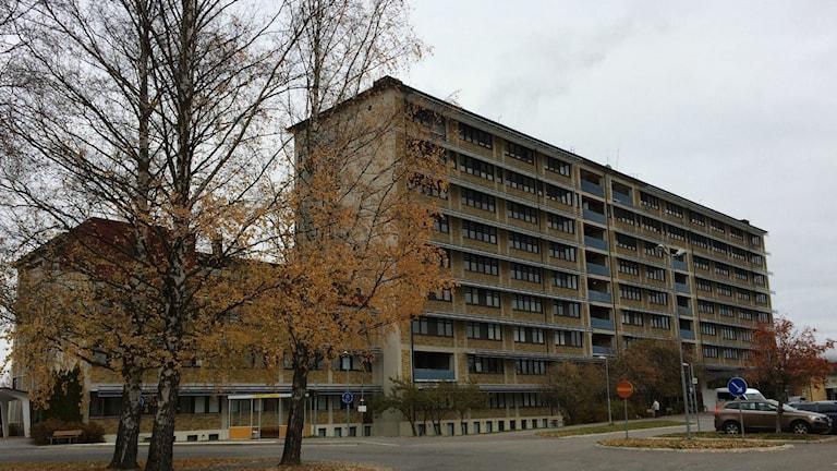 Sollefteå sjukhus. Foto: Johanna Svensson/Sveriges Radio