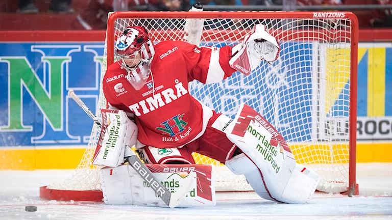 Timrås målvakt Victor Brattström räddar skott under hockeymatchen mot Almtuna. Foto: Pär Olert/Bildbyrån
