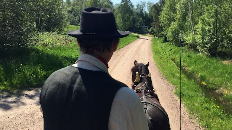 På tur i vagn med hästen Philur. Foto: Niklas Axelsson/Sveriges Radio