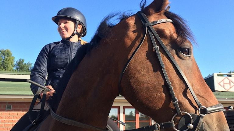 Julia Abrahamsson och hästen Suzuki.
