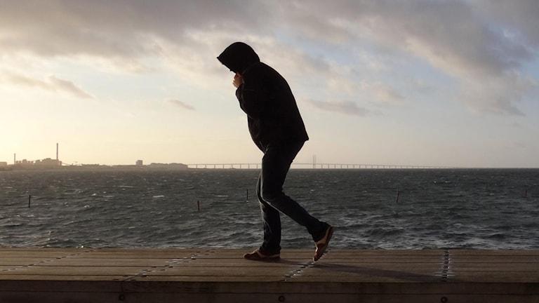 En man kämpar i motvind på en kaj med luvan uppfälld. Foto: Johan Nilsson/TT