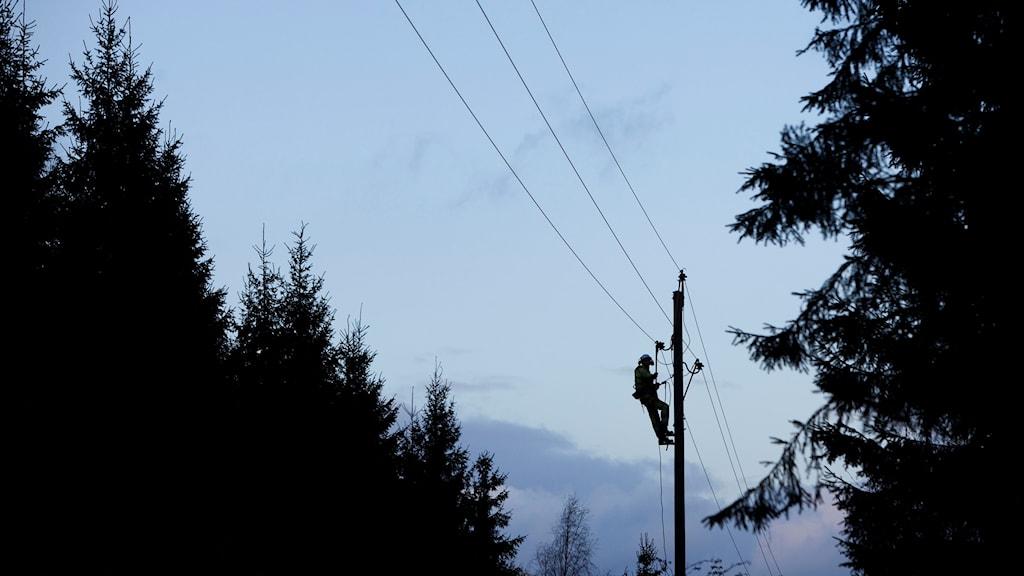 Röjning och reparation av el-ledningar utanför Lilla Skog nära Hässleholm i Skåne.