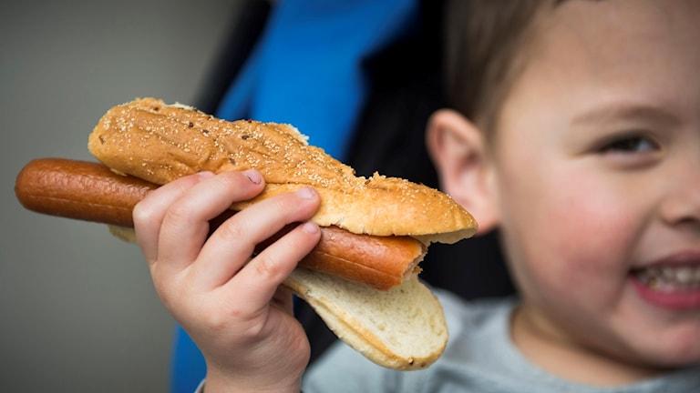 En pojke äter korv med bröd. Foto: Erik Nylander/TT
