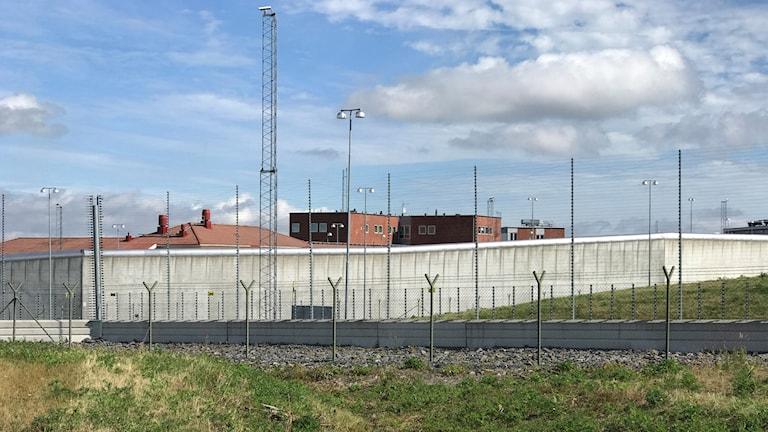 Saltviksanstalten i Härnösand tagen på långt avstånd med stängsel i förgrunden. Foto: Fredrik Birging/Sveriges Radio