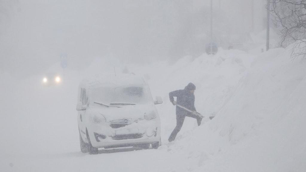 SUNDSVALL 20180201 Snöoväder har dragit in över kusten i Västernorrland. Skolor har stängts och trafikanter har stora problem. Man skottar vid sin bil. Foto: Mats Andersson  / TT / Kod 62210