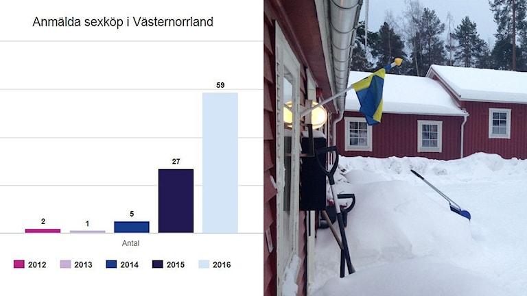 Bildkollage: Staplar visar hur antalet anmälningar har ökat 2012-2016. Vandrarhemmet på Norra berget där flera sexköp har avslöjats. Foto: Anna Ahlström/Sveriges Radio