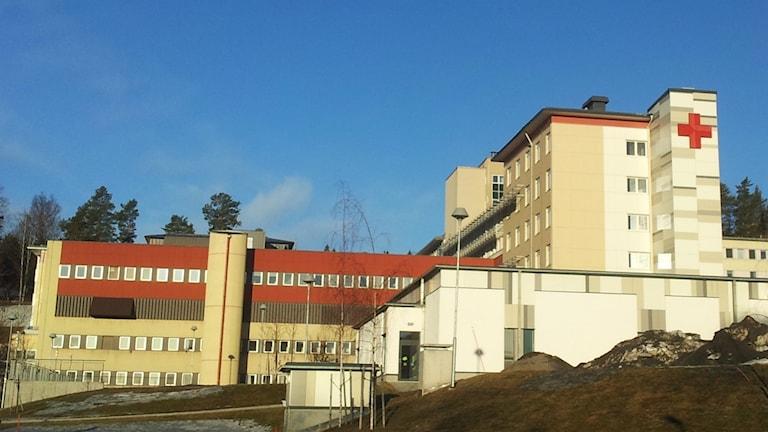 Solen faller på Örnsköldsviks sjukhus en aprilmorgon.